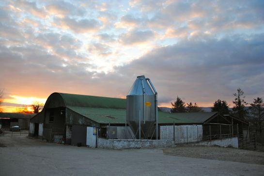 irish-farm-sunset